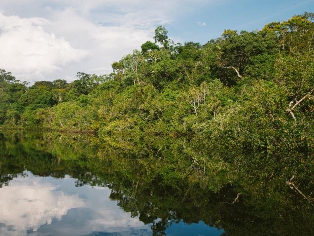sustentabilidade marca Brasil