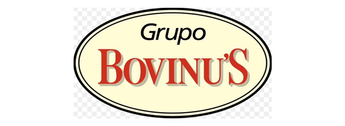 Bovinus