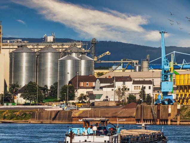 oportunidades de exportação agronegócio