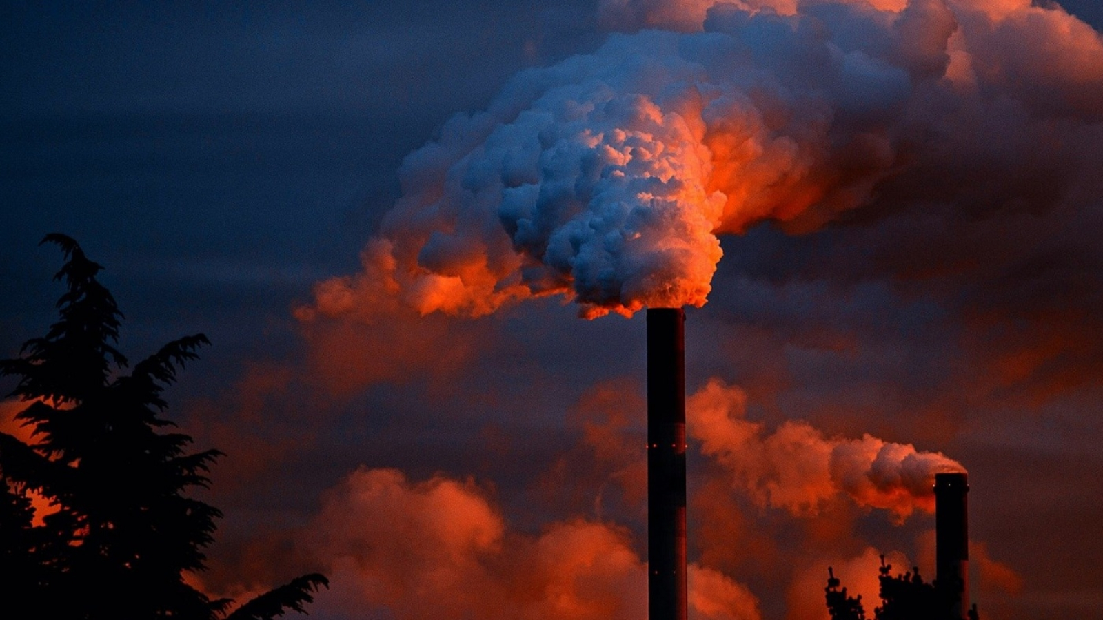 mudanças climáticas e protecionismo