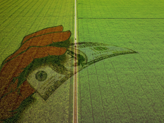 subsídios agrícolas